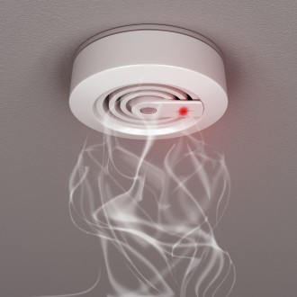 Smoke and fire detector with smoke