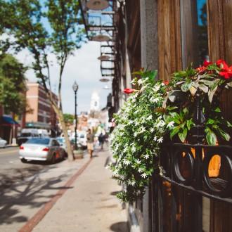 Sunny Spring day in Boston
