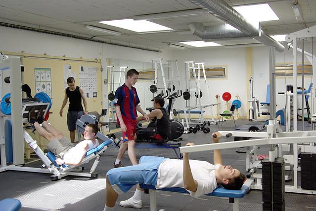 Vie En Forme Musculation Neuilly Sur Marne